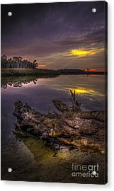 Logging Out Acrylic Print by Marvin Spates
