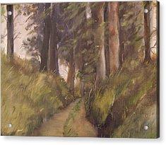 Logging Road Acrylic Print