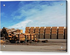 Logs And Plywood At Lumber Mill Acrylic Print