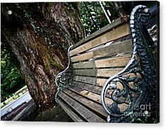 Acrylic Print featuring the photograph Lone Bench In The Park by Yurix Sardinelly