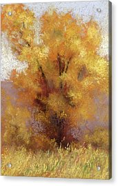 Acrylic Print featuring the painting Lone Cottonwood by David King