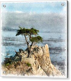 Lone Cypress Watercolor Acrylic Print by Edward Fielding