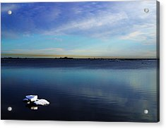 Lone Ice Acrylic Print by Anthony Jones