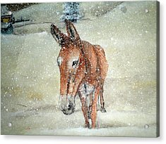 Acrylic Print featuring the painting Lone Mule by Debbi Saccomanno Chan