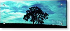 Acrylic Print featuring the photograph Lone Oak by Jim and Emily Bush