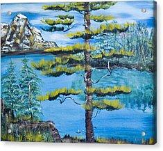 Lone Pine Acrylic Print by Mikki Alhart