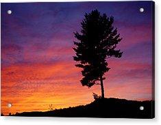 Lone Pine Sunset Acrylic Print