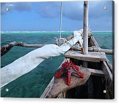 Lone Red Starfish On A Wooden Dhow 1 Acrylic Print
