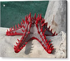 Lone Red Starfish On A Wooden Dhow 3 Acrylic Print