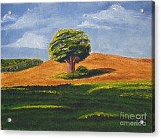 Lone Tree Acrylic Print by Mendy Pedersen
