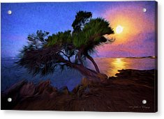 Lone Tree On Pacific Coast Highway At Moonset Acrylic Print by John A Rodriguez