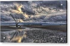 Lone Tree Under Moody Skies Acrylic Print