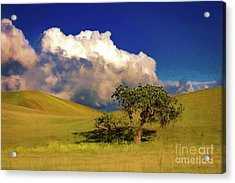Lone Tree With Storm Clouds Acrylic Print by John A Rodriguez