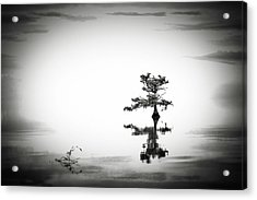 Loneliness Acrylic Print by Eduard Moldoveanu
