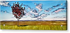 Lonely Autumn Tree Acrylic Print