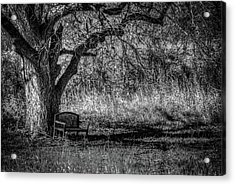 Lonely Bench Acrylic Print