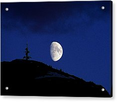 Acrylic Print featuring the photograph Lonely Companion by Blair Wainman