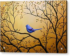 Lonely Night By Amy Giacomelli Bird Art Acrylic Print