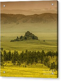 Lonely Rock Acrylic Print by Dennis Wagner