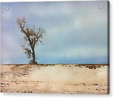 Acrylic Print featuring the digital art Lonely Sentinel  by Shelli Fitzpatrick