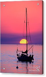 Acrylic Print featuring the photograph Lonely Sunset by Bernardo Galmarini
