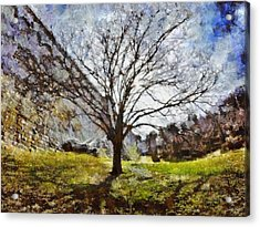 Acrylic Print featuring the painting Lonely Tree by Derek Gedney