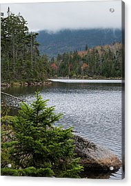 Lonesome Lake Acrylic Print