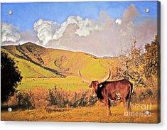 'lonesome Longhorn' Acrylic Print by Gus McCrea