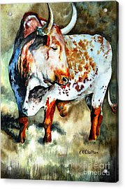 Lonesome Longhorn Acrylic Print by Karen Kennedy Chatham