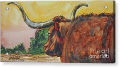 Lonesome Longhorn Acrylic Print by Ron Stephens