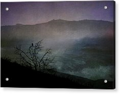 Lonesome Point Acrylic Print