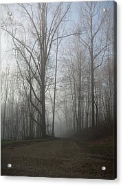 Acrylic Print featuring the photograph Lonesome Road by Cynthia Lassiter