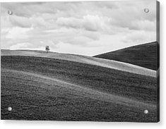 Lonesome Acrylic Print by Ryan Manuel