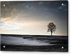 Lonesome Tree On A Hill IIi Acrylic Print