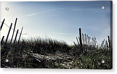 Long Beach Fence Acrylic Print by Joanne Brown