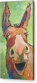 Long Face Acrylic Print by Sandy Tracey