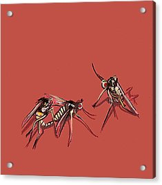 Long-legged Flies Acrylic Print by Jude Labuszewski