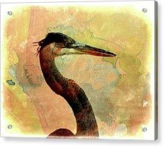 Long Neck 2 Acrylic Print