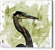 Long Neck 5 Acrylic Print by Marty Koch