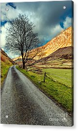 Long Road Home Acrylic Print by Adrian Evans