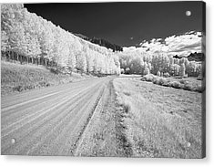 Acrylic Print featuring the photograph Long Road In Colorado by Jon Glaser