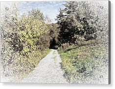 Long Trail Acrylic Print