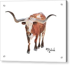 Longhorn 17 Big Daddy Watercolor Painting By Kmcelwaine Acrylic Print