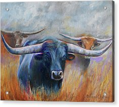Longhorn Country Acrylic Print by Karen Kennedy Chatham