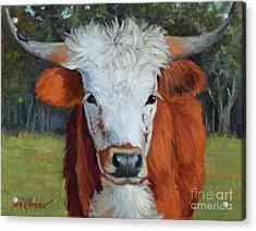 Longhorn Cow Painting II, Ms Tilly  Acrylic Print