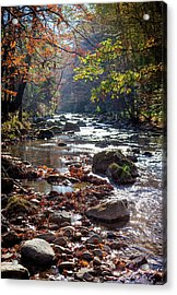 Acrylic Print featuring the photograph Longing For Home by Karen Wiles
