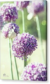 Acrylic Print featuring the photograph Longing For Summer Days by Linda Lees