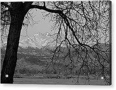 Longs Peak And Mt. Meeker The Twin Peaks Black And White Photo I Acrylic Print