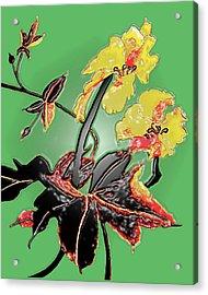 Loofah Gourd Flower - Three Dimensional Acrylic Print