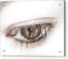 Look Away Acrylic Print by Kelly Jade King